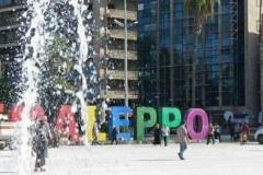حلب الشهباء